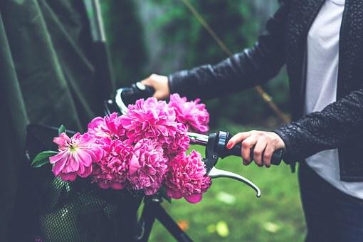bike-791580__340
